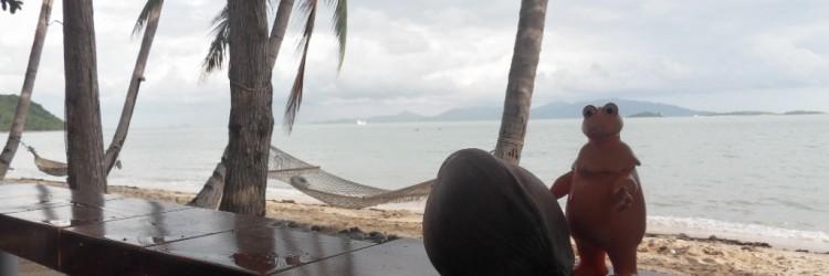 Petit break à Ko Samui, île du sud de la Thaïlande